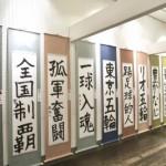 2016hamayosiki2
